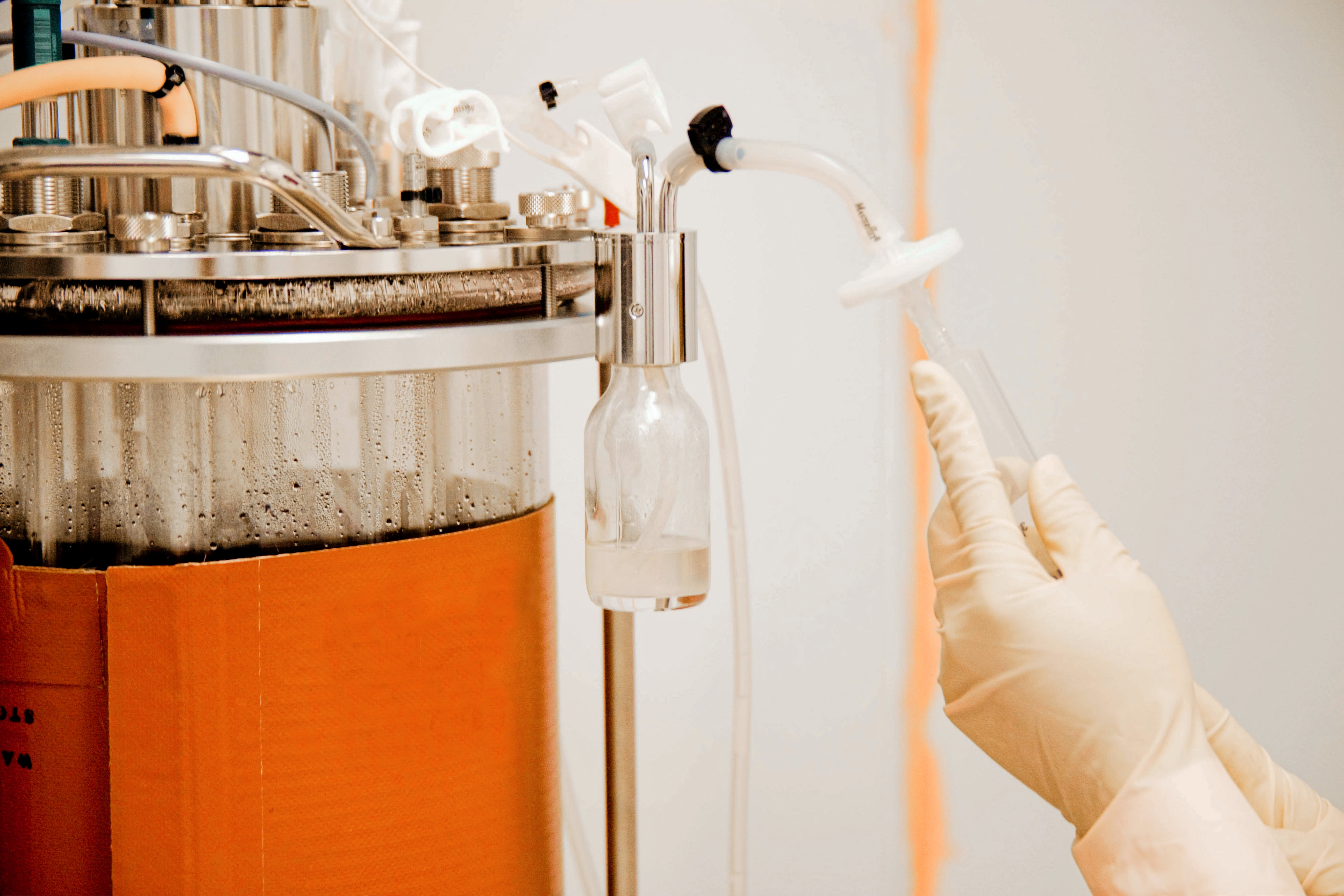 Microbial Fermentation